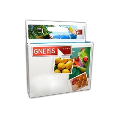 CARTUCHO GNEISS EPSON T0461 NEGRO
